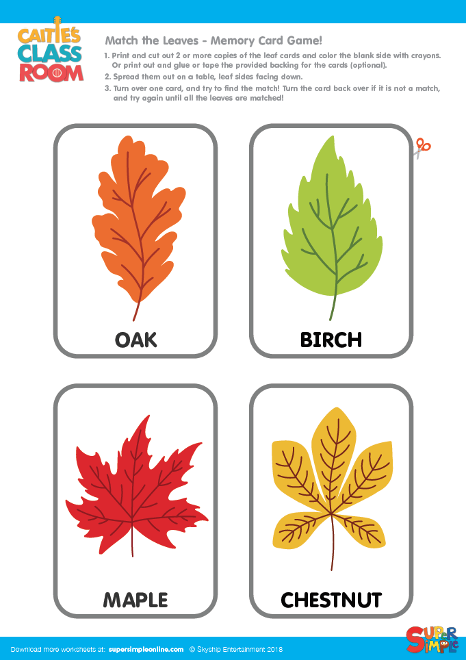 Match The Leaves