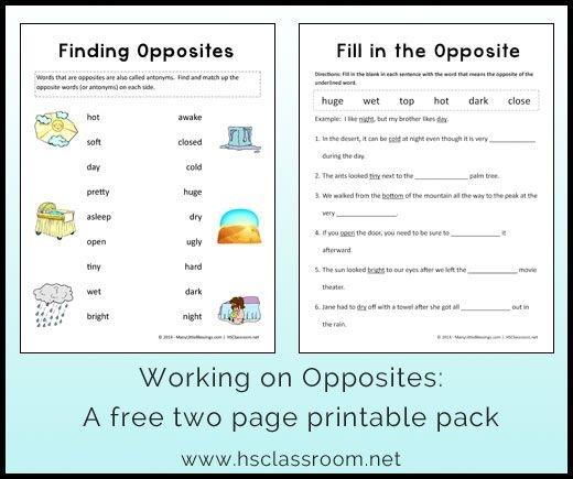 Opposites Worksheet Printable Packet