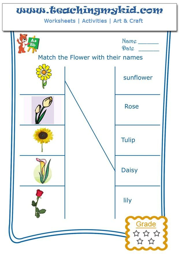Printable Kindergarten Worksheets  Match Flowers With Name