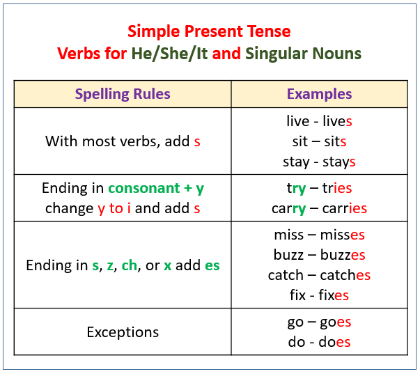 Simple Present Simple Present Tense Exercise  Simple Present