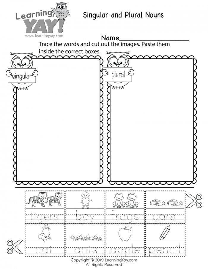 Sorting Singular And Plural Nouns Worksheet For St Grade Free