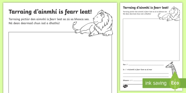 The Zoo Aistear Draw Your Favourite Animal Worksheet  Worksheet