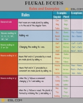 worksheet grammar time plural nouns  regular plural nouns 7