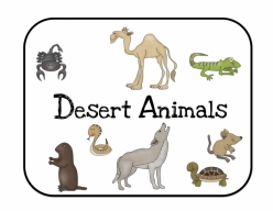 Desert Animals Activity Placemat