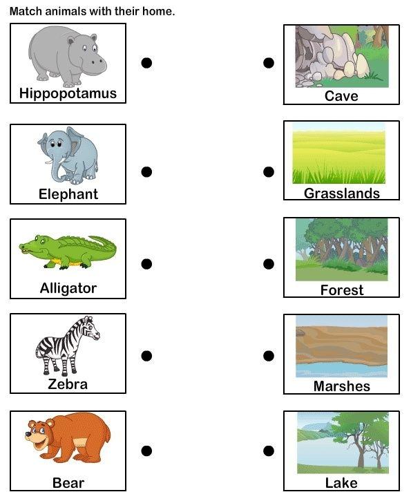 English Worksheets Animal Habitats Matching To Animals Reception