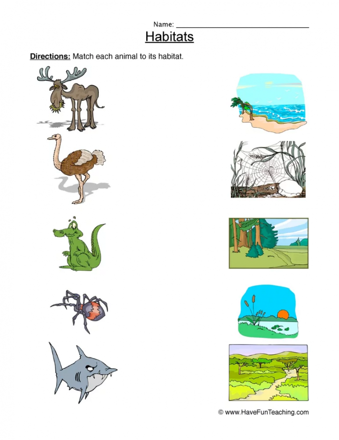 Matching Animal Habitats Worksheet
