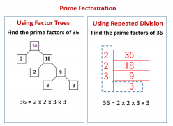Prime Factorization Explained