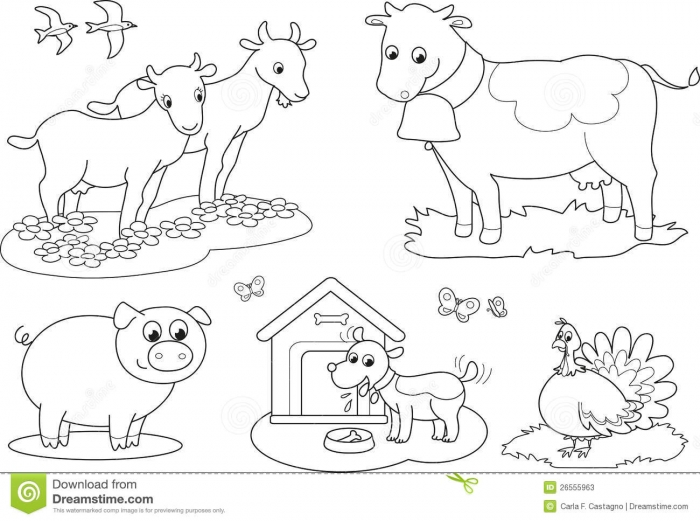 Simple Farm Animal Coloring Pages For Kids To Print Freeschool