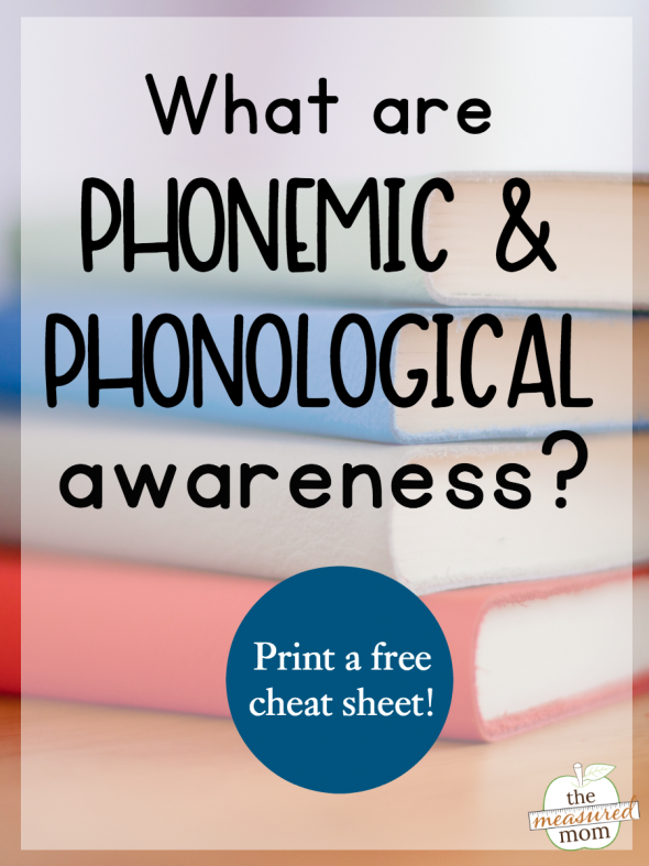 What Are Phonological And Phonemic Awareness
