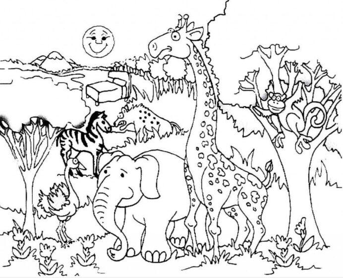 Animals Coloring Animal Habitats With Grade Math Problems