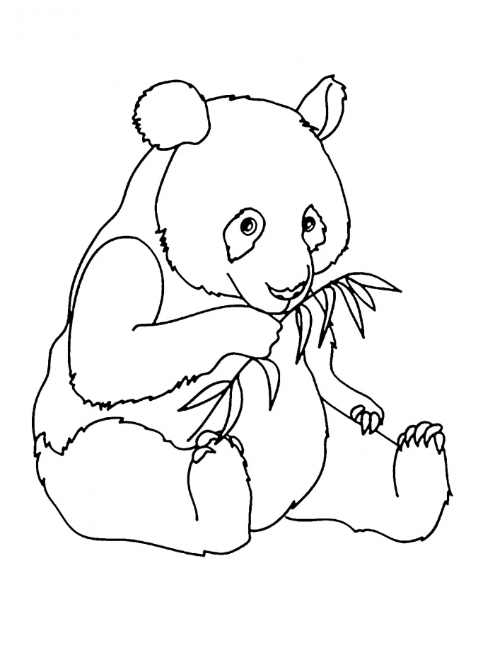 Coloring Pages  Coloring Pages For Childrendas Cuteda Sheet Free