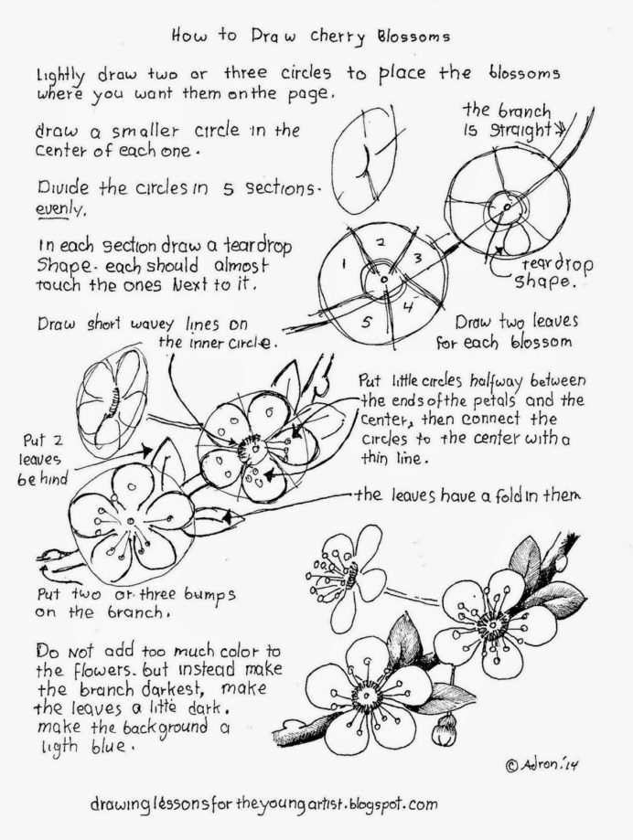 Droodle Worksheet Printable Worksheets And Activities For Free