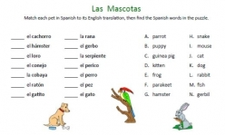 Animals In Spanish: Match-Up