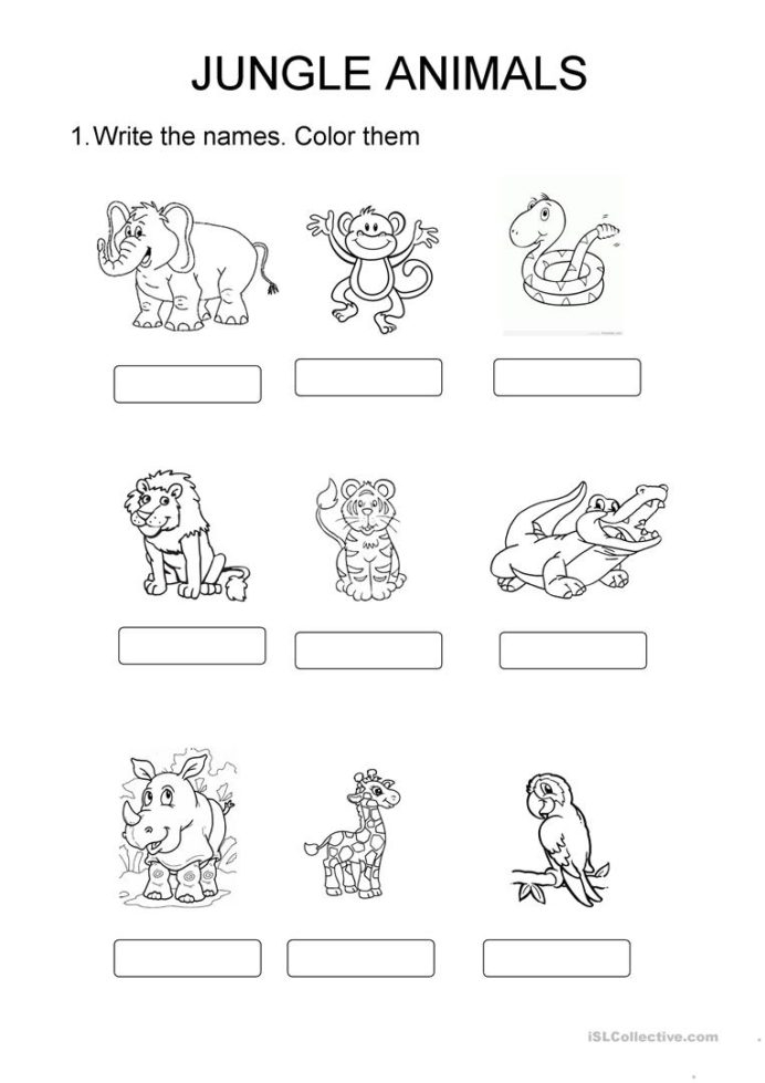 Jungle Animals English Esl Worksheets For Distance Learning And