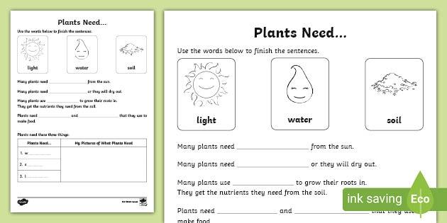 Plants Need Worksheet Acssu Teacher Made