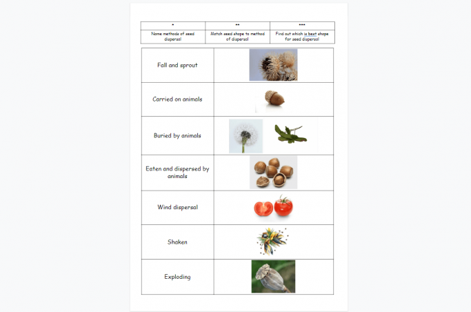 Seed Dispersal Powerpoint And Worksheet For Ks Science