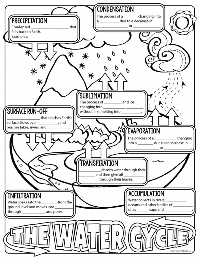 The Water Cycle Notes Worksheet