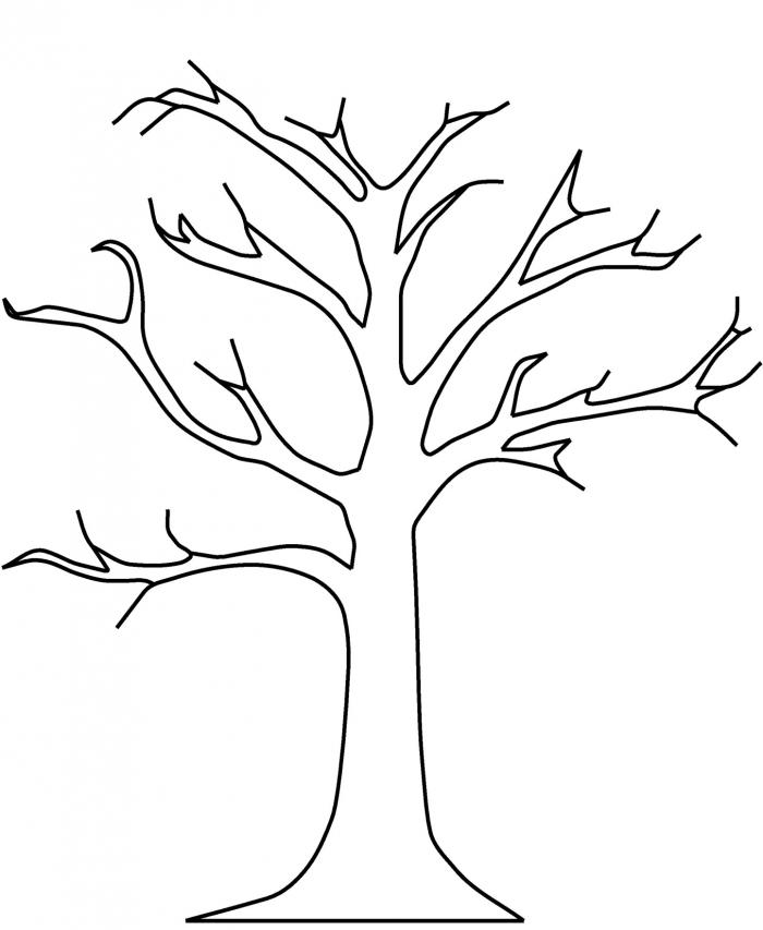 Tree Coloring The Sun Flower Kumon Saturday Classes Math