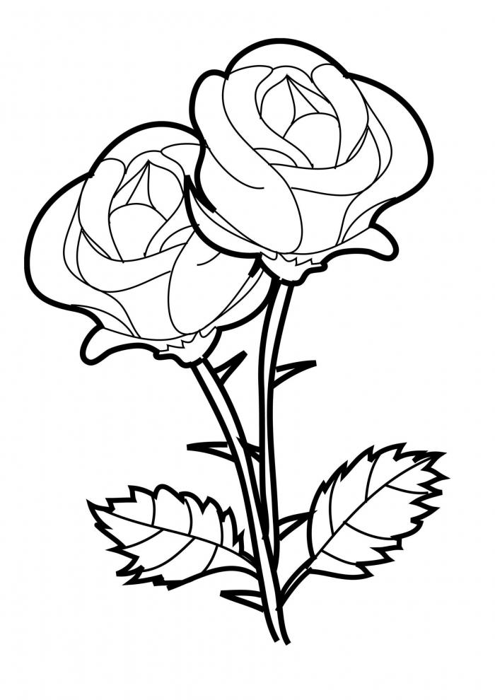 Worksheets  Free Coloring Sheets Made By Joel Birds And Trees