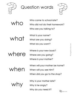 Common Question Words