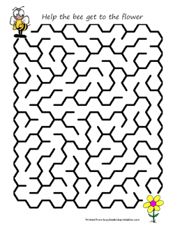 Insect Maze