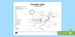 Label The Water Cycle