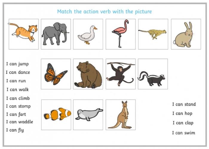 Animal Actions Interactive Worksheet