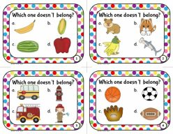 Sorting Activity: What Doesn't Belong?