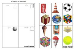 d shapes real life examples cbru 8