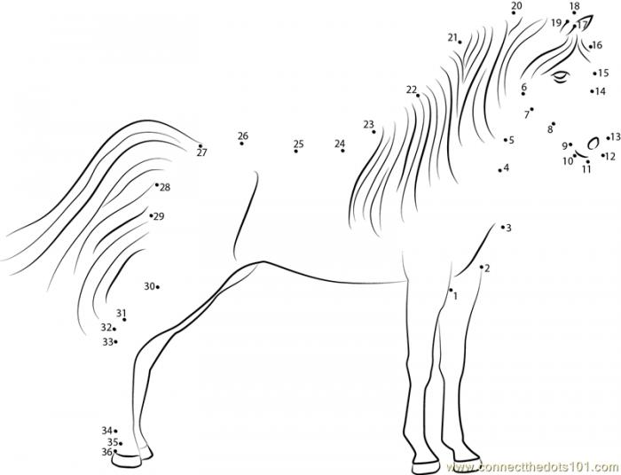 Dot To Dot Horse Worksheets