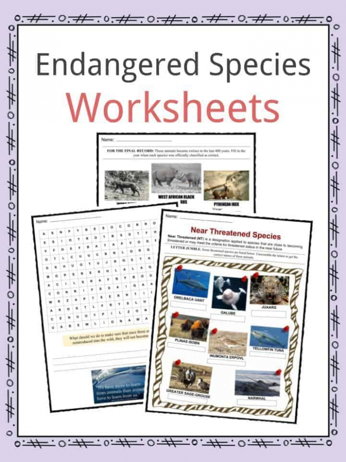 Endangered Species Facts  Worksheets  Categories   Types Of Animals