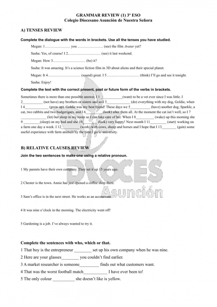 Grammar Review Tenses And Relative Clauses Worksheet