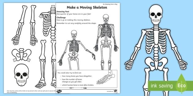 Make A Moving Skeleton Worksheet