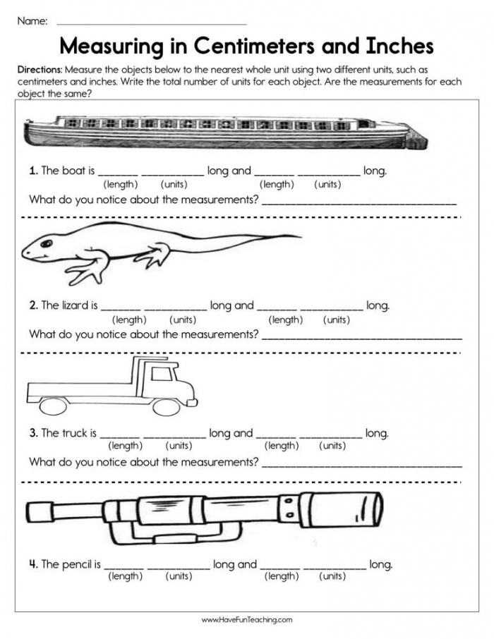 Measuring In Centimeters And Inches Worksheet  Have Fun Teaching
