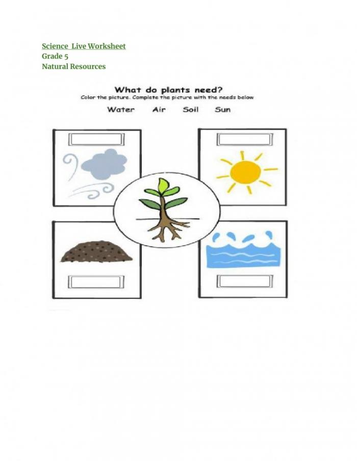 Natural Resources Online Activity