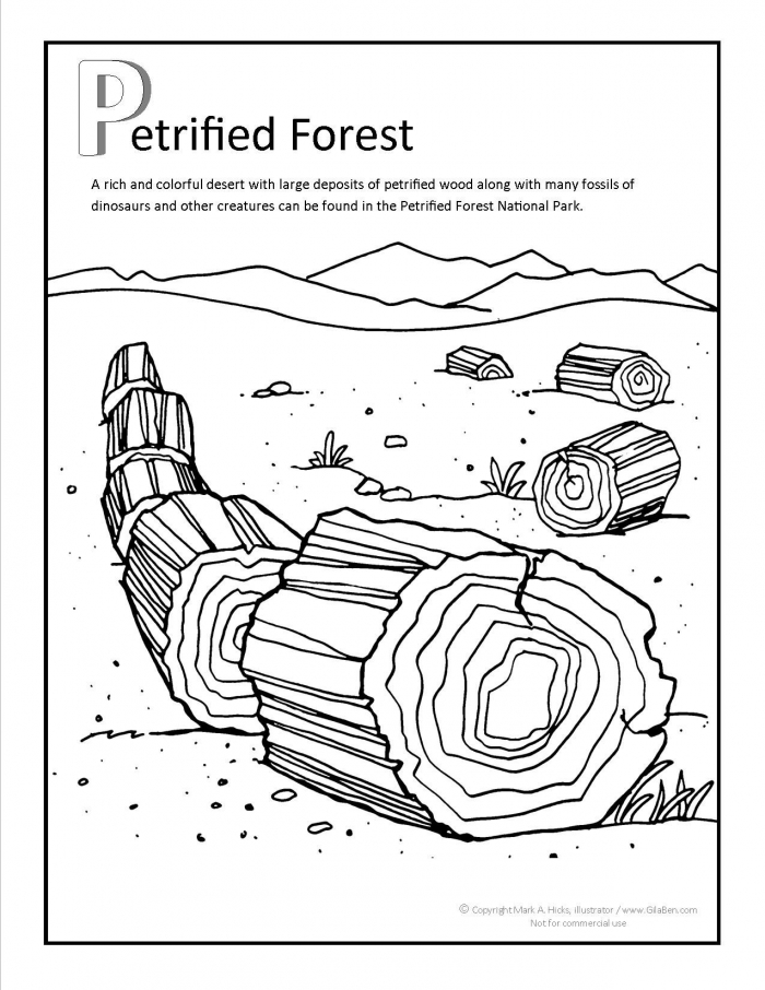 Petrified Forest Coloring Page
