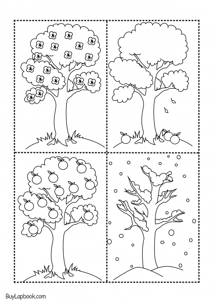 The Four Seasons Of The Apple Tree Printables