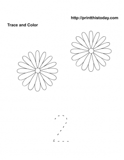 Flower Count And Color