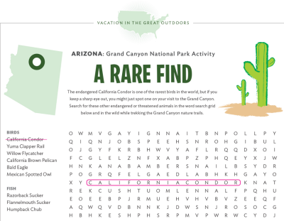 Grand Canyon National Park Activity Sheet