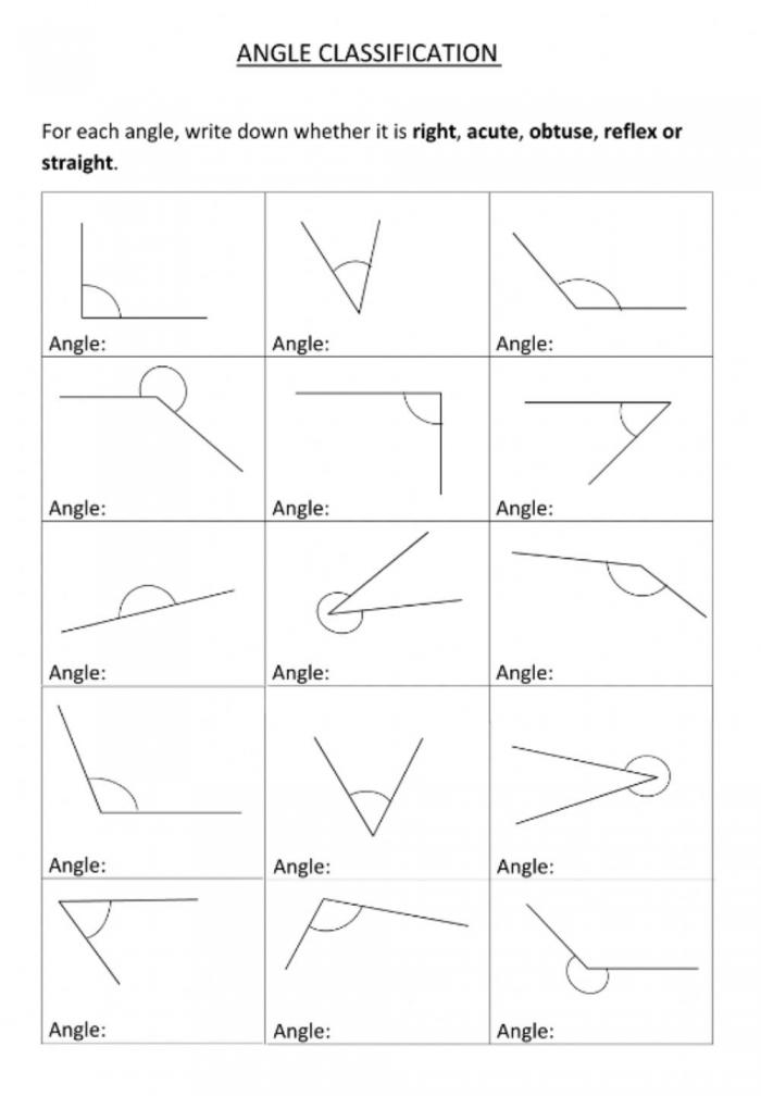 Identifying Angles Activity
