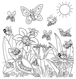 Coloring Page: Bugs In Nature!