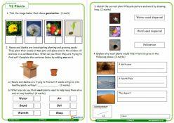 Resource: Plants