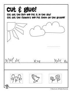 Cut-Out Graph: Birds