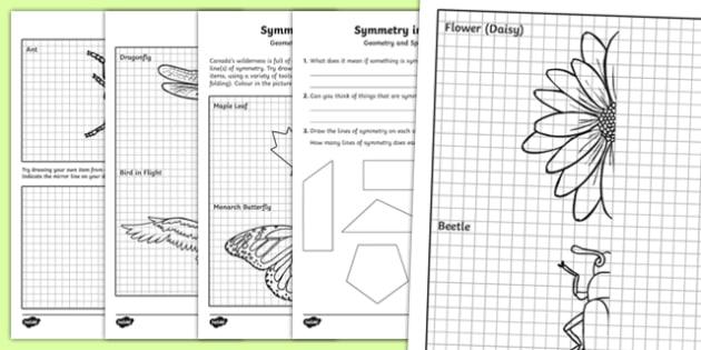 Symmetry In Nature Worksheet  Worksheet  Worksheet