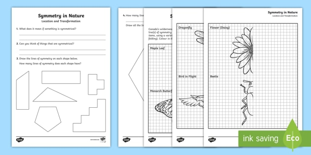 Symmetry In Nature Worksheet  Worksheet Teacher Made