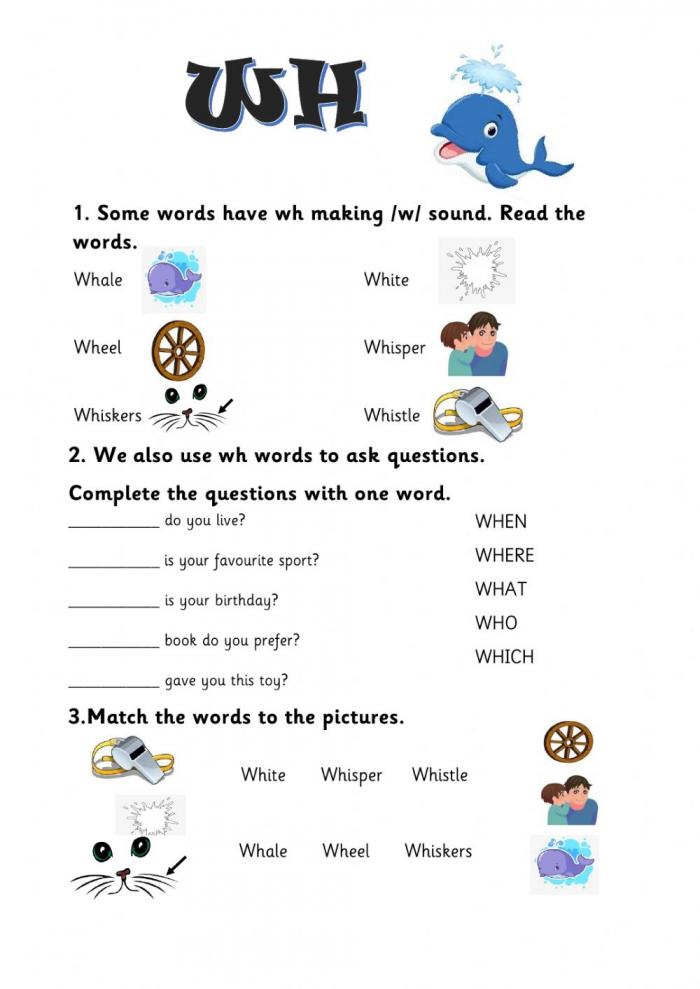Wh Words Online Worksheet