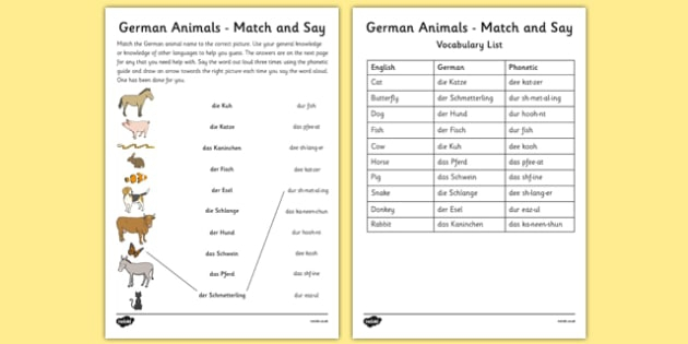 Animal Vocabulary In German