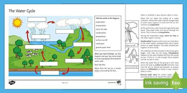 Explain The Water Cycle In Your Own Words Worksheet