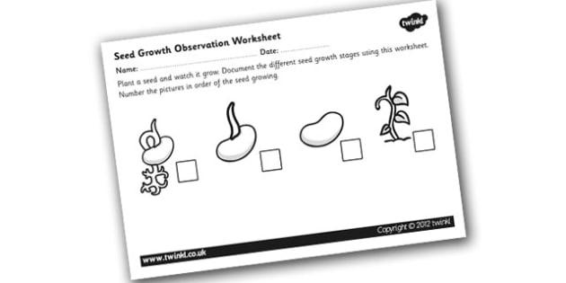 Germination Worksheet