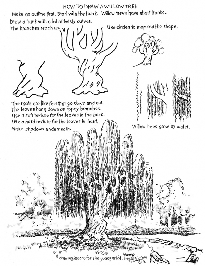 How To Draw Worksheets For The Young Artist How To Draw A Willow
